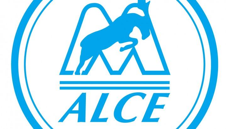 4 декабря в Новосибирске состоится семинар Alce International Rus