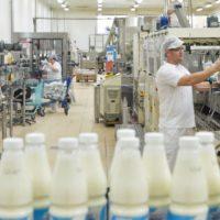 Выступления докладчиков специальной секции третьего дня молочного форума представили достижения молочной отрасли