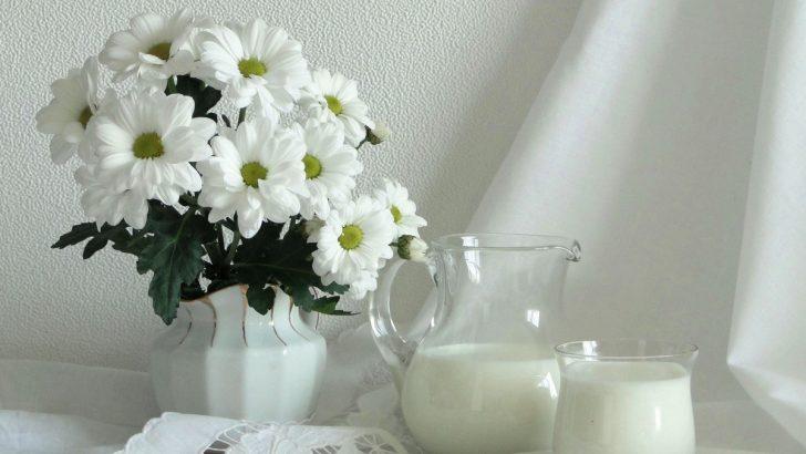 Молочный союз России поздравляет  дам с праздником!