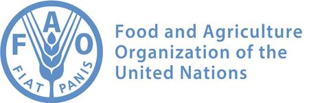 Молочный союз и ФАО ООН обсудили ситуацию с программой «Школьное молоко» в России